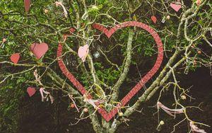 Превью обои дерево, ветки, сердечки, любовь