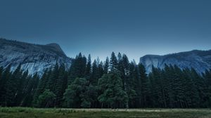 Превью обои деревья, лес, горы, сша, штат калифорния, долина йосемити, национальный парк