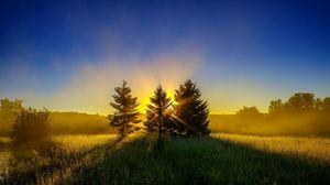 Превью обои деревья, трава, закат, небо