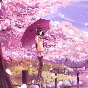Превью обои девушка, зонтик, сакура, аниме, арт