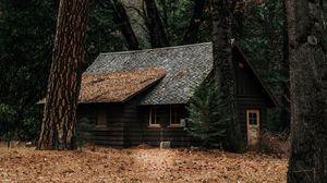 Превью обои дом, лес, уединение, лесной, осень, деревья