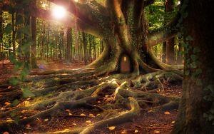 Превью обои домик, лес, дерево, корни, фантазия
