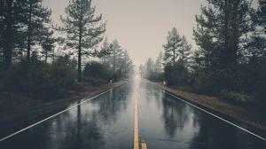 Превью обои дорога, асфальт, дождь, мокрый, деревья, кусты