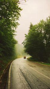 Превью обои дорога, автомобиль, путешествия, лес, туман, природа