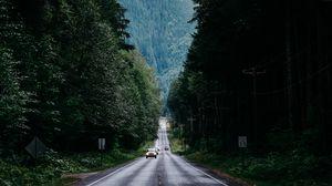 Превью обои дорога, деревья, разметка, туман, лес, движение