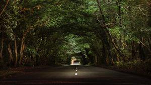 Превью обои дорога, деревья, тоннель, ветки, асфальт