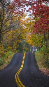 Превью обои дорога, разметка, лес, деревья, осень, пейзаж