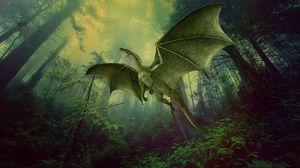 Превью обои дракон, лес, туман, полет, фотошоп