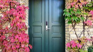 Превью обои дверь, осень, лестница, растения