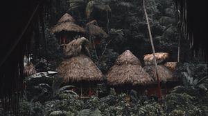 Превью обои джунгли, пальмы, хижины, домики, тропики