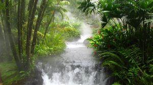 Превью обои джунгли, река, водопад, растительность, цветы, папоротник, поток