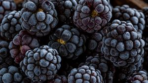 Превью обои ежевика, ягода, фрукт, макро