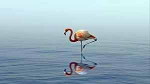 Превью обои фламинго, отражение, озеро, вода, птица, стоит