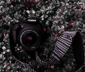 Превью обои фотоаппарат, объектив, ремешок, растение, куст