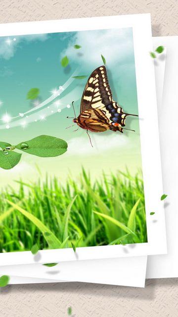 360x640 Обои фотокарточка, бабочка, клипарт