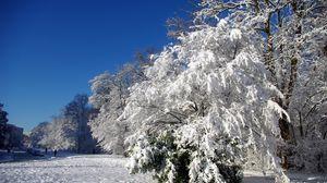 Превью обои франция, велизи-вилакубле, деревья, иней, снег, зима, ясно