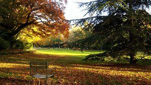 Превью обои франция, париж, люксембург, парк, осень, стул