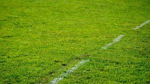 Превью обои газон, трава, разметка, зелень