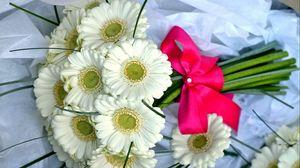 Превью обои герберы, цветы, букет, белоснежные, бант, красиво