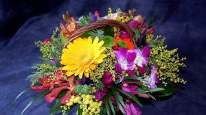 Превью обои герберы, хризантемы, мимоза, цветы, корзина, композиция, оформление
