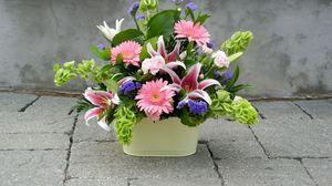Превью обои герберы, лилии, гвоздики, композиция, оформление