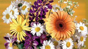 Превью обои герберы, ромашки, цветы, букет, оформление, ваза, красота