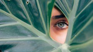 Превью обои глаз, лист, растение