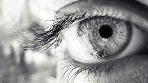 Превью обои глаз, ресницы, зрачок, чб