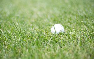 Превью обои гольф, мячик, трава, спорт