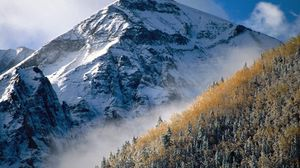 Превью обои гора, пик, деревья, склон, туман, макушки, осень, день