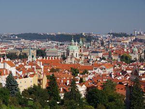 Превью обои город, здания, крыши, архитектура, деревья, вид сверху