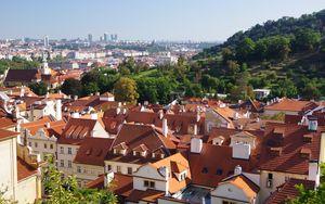 Превью обои город, здания, крыши, архитектура, вид сверху, деревья