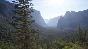 Превью обои горы, лес, деревья, вид сверху, природа
