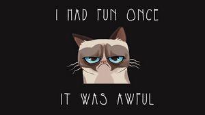 Превью обои гремпи кот, grumpy cat, гремпи, кот, грусть, печаль