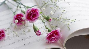 Превью обои гвоздики, гипсофил, ноты, музыка