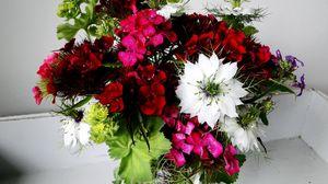 Превью обои гвоздики, нигелла, цветы, букет, красиво