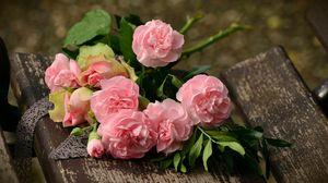 Превью обои гвоздики, цветы, букет, розовый