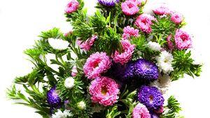 Превью обои хризантемы, букет, яркий, красочный, разноцветный