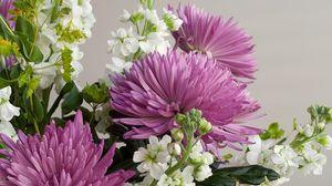 Превью обои хризантемы, цветы, букет, крупный план