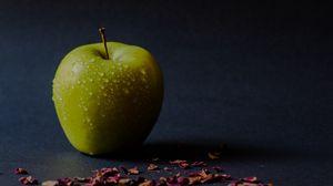 Превью обои яблоко, зеленый, мокрый, спелый, лепестки