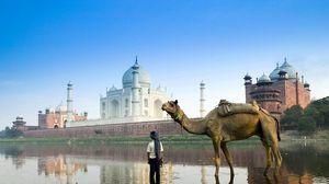 Превью обои ислам, архитектура, мусульмане, верблюд, улица