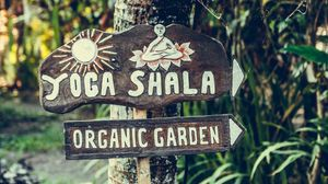 Превью обои йога, вывеска, сад, органика, дерево