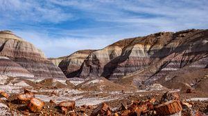 Превью обои каньон, скалы, бревна, природа, пейзаж