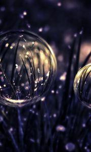 Превью обои капли, пузыри, трава