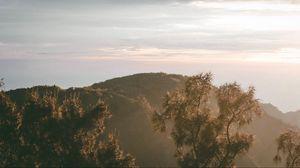 Превью обои холм, деревья, небо, туман