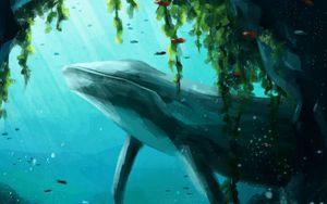 Превью обои кит, животное, под водой, вода, рыбы, арт