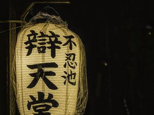 Превью обои китайский фонарик, фонарик, свет, иероглифы, слова