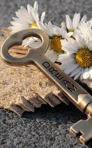 Превью обои ключ, ромашки, надпись, мечта