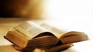 Превью обои книга, страница, листья