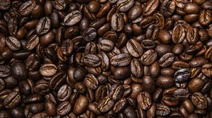Превью обои кофейные зерна, кофе, зерна, коричневый, текстура
